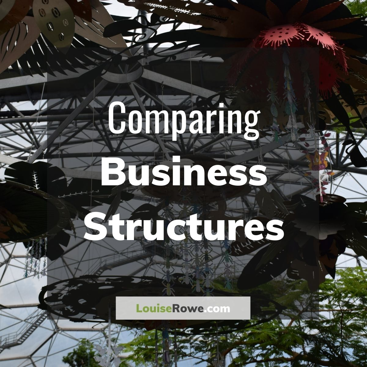 Comparing Business Structures (title). Photo credit © L Rowe 2020