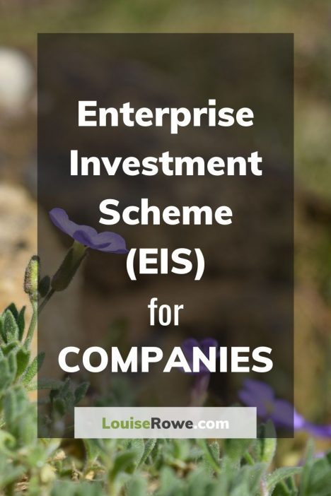 Enterprise Investment Scheme (EIS) for Companies (pin). Photo credit © L Rowe 2016