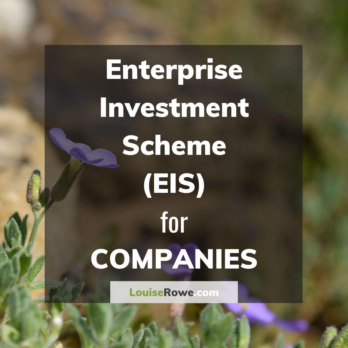 Enterprise Investment Scheme (EIS) for Companies (title). Photo credit © L Rowe 2016