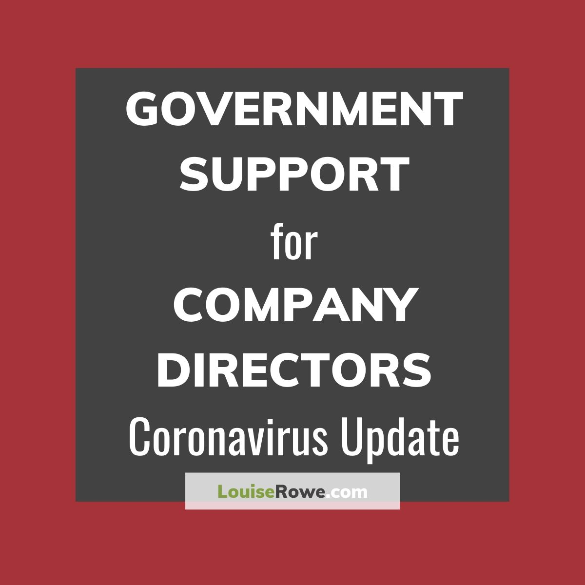 Government Support for Company Directors Coronavirus (title). Photo credit © L Rowe 2020