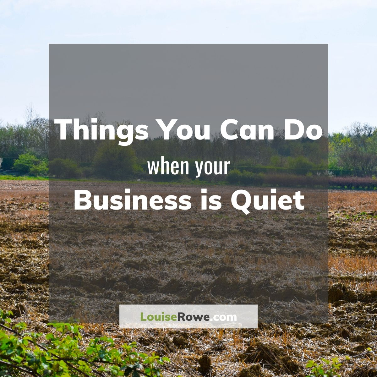 Things you can do when your business is quiet (title). Photo credit © L Rowe 2020